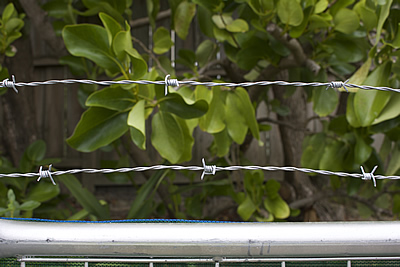 temp fence barbed wire